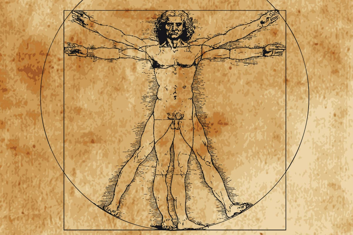 Boceto Leonardo da Vinci 2016